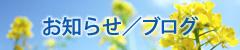 お知らせ/ブログ